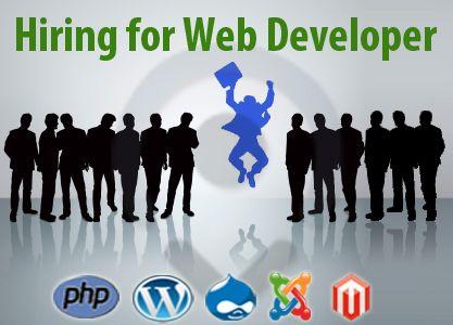 Best 25+ Web developer resume ideas on Pinterest Web development - web development manager sample resume