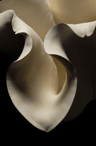 gallery-bloom15 | lidewij edelkoort