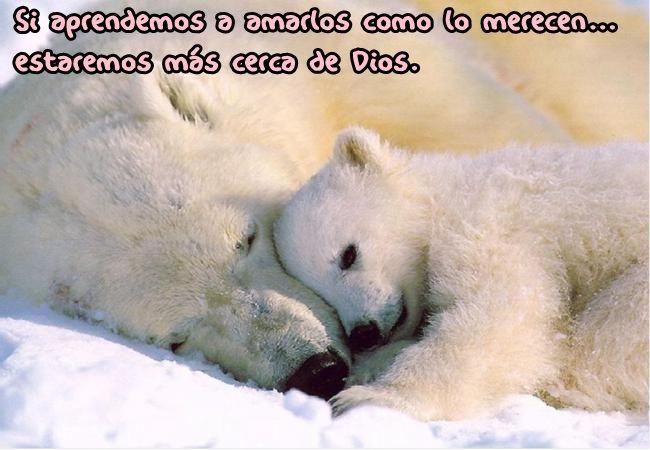 Si aprendemos a amarlos como lo merecen...estaremos mas cerca de Dios.♡♡♡♡♡♡♡