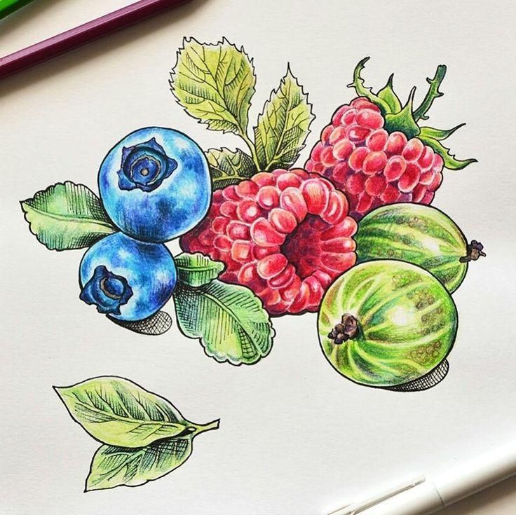 рисунки с ягодами душевное, так физическое
