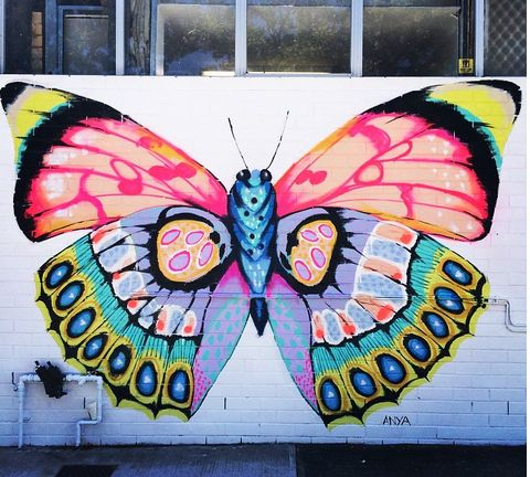 Butterfly murals on the corner of Townshend and Churchill Street, Subiaco Perth…