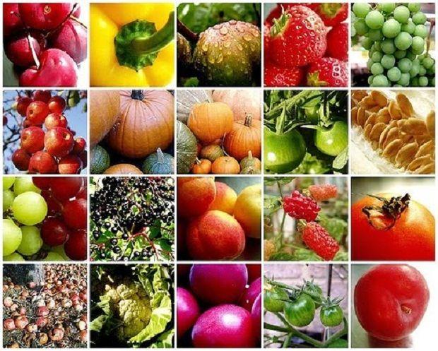 Meyve ve Sebze Suları    Taze sıkılmış sebze ve meyve sularının vücut ve zihin sağlığımız üzerinde inanılmaz pozitif etkileri vardır.    Kış mevsimi, besin değeri yönünden zengin yeşil, kırmızı ve turuncu meyve ve sebzeler bakımından birçok alternatif sunar.