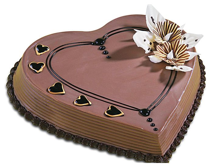 10 best chocolate cakes images on pinterest chocolate cake bolo monginis online eggless plum cake is the best indian cake offers your extensive array for every occasion celebrations sciox Image collections