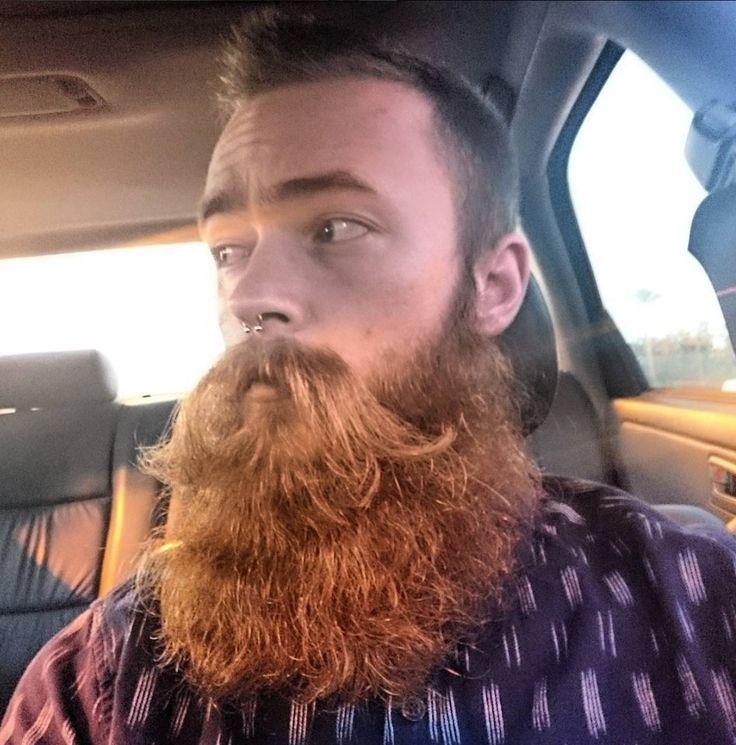 Wavy Ginger Beard                                                                                                                                                     More