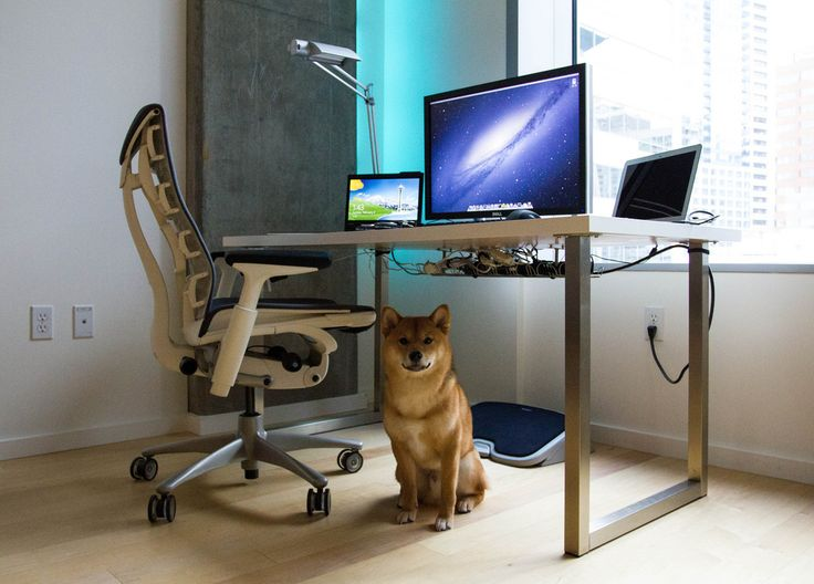 chad desk with awesome herman miller embody chair