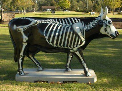 Skele-Cow from the arty cows of Shepparton