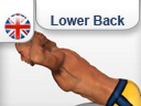 Exercises Lower back  muscles on the ball
