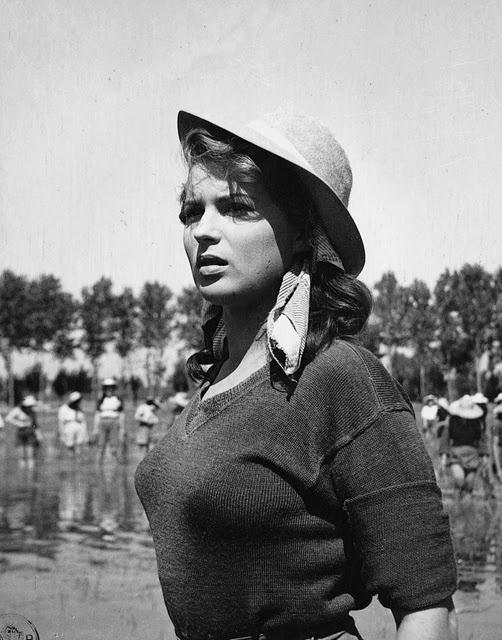 Silvana Mangano, Riz amer de Giuseppe de Santis (1949).