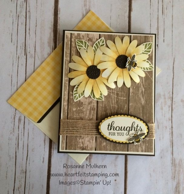 324 Best Su Daisy Delight Amp Dsp Images On Pinterest