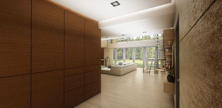 Entrance Hallway & Living Room
