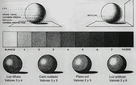 El claroscuro y el valor       EL claroscuro es una técnica de dibujo que busca la representación de los objetos a partir del desarrollo de...