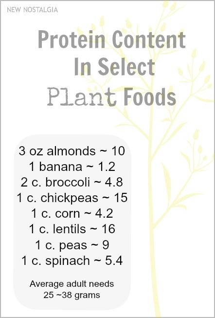 12 Favorite Plant Sources Of Protein   39 Plant Based Recipes