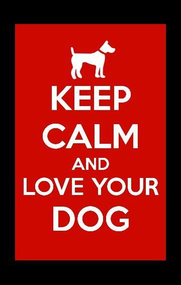 Für Hundebesitzer