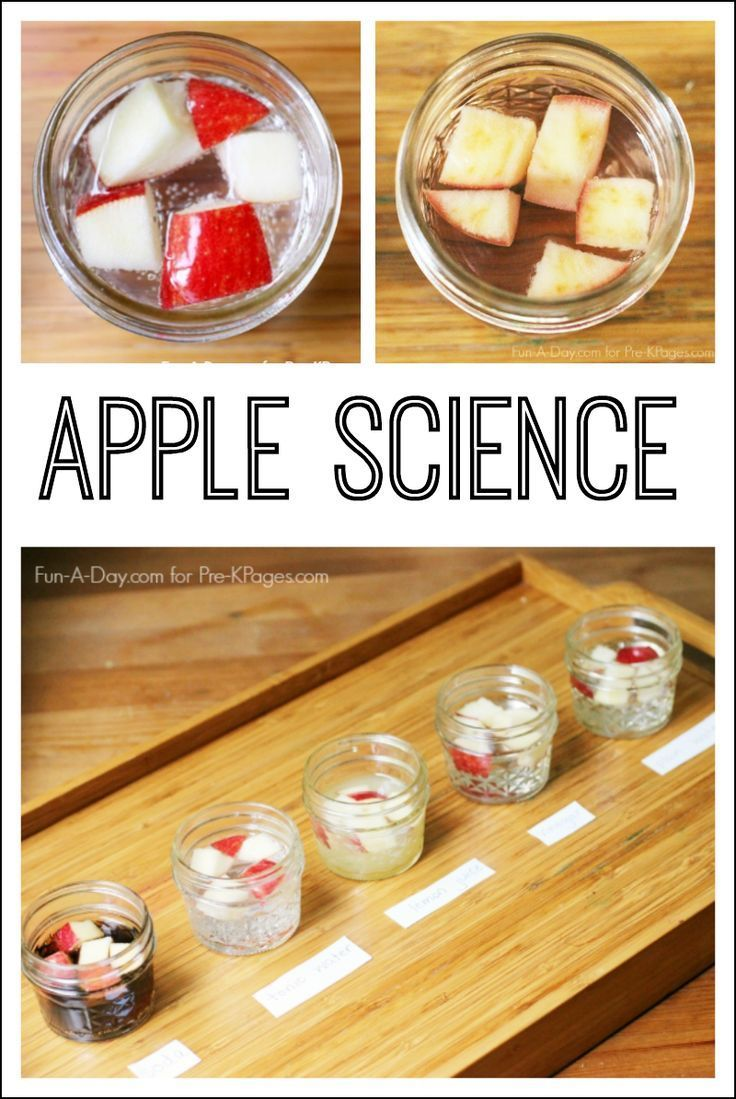 Apple Science Experiment for Preschool and Kindergarten. A Super Simple and Easy…