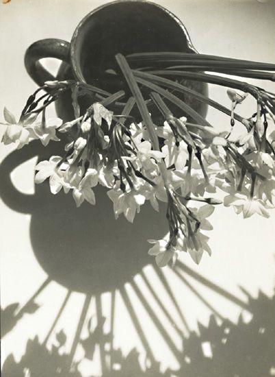 Irène Lichtenstein  Pierre Auradon, 1939