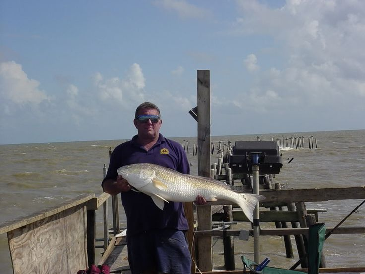 18 best kayak fishing galveston texas images on pinterest for Surf fishing for sharks