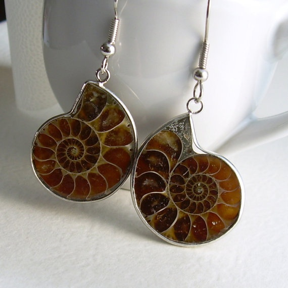 Nautilus Earrings Ammonite Fossil Jewelry by cindylouwho2 on Etsy, $32.00