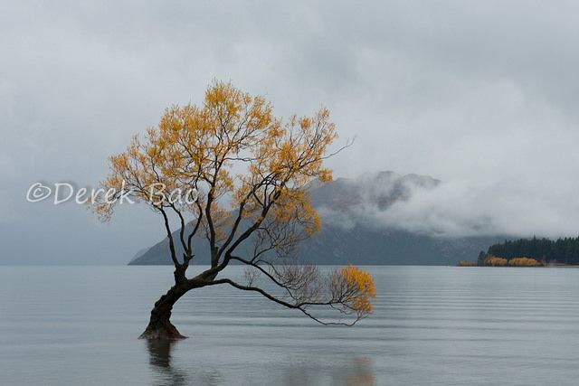 2015 Wanaka Autumn, Zew Zealand.