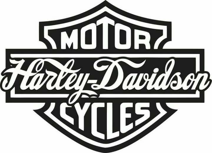 13 Fabulous Harley Davidson Tee Ideas Harley Davidson Logo Harley Davidson Crafts Harley Davidson Tattoos