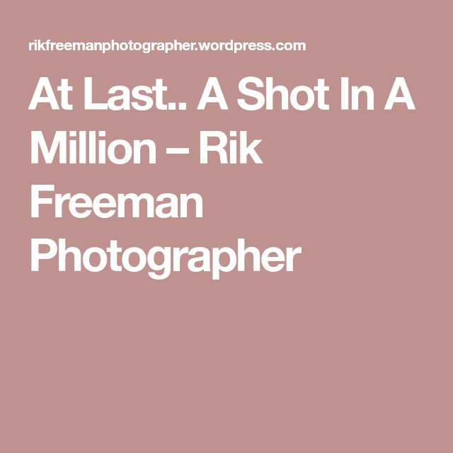 At Last.. A Shot In A Million – Rik Freeman Photographer