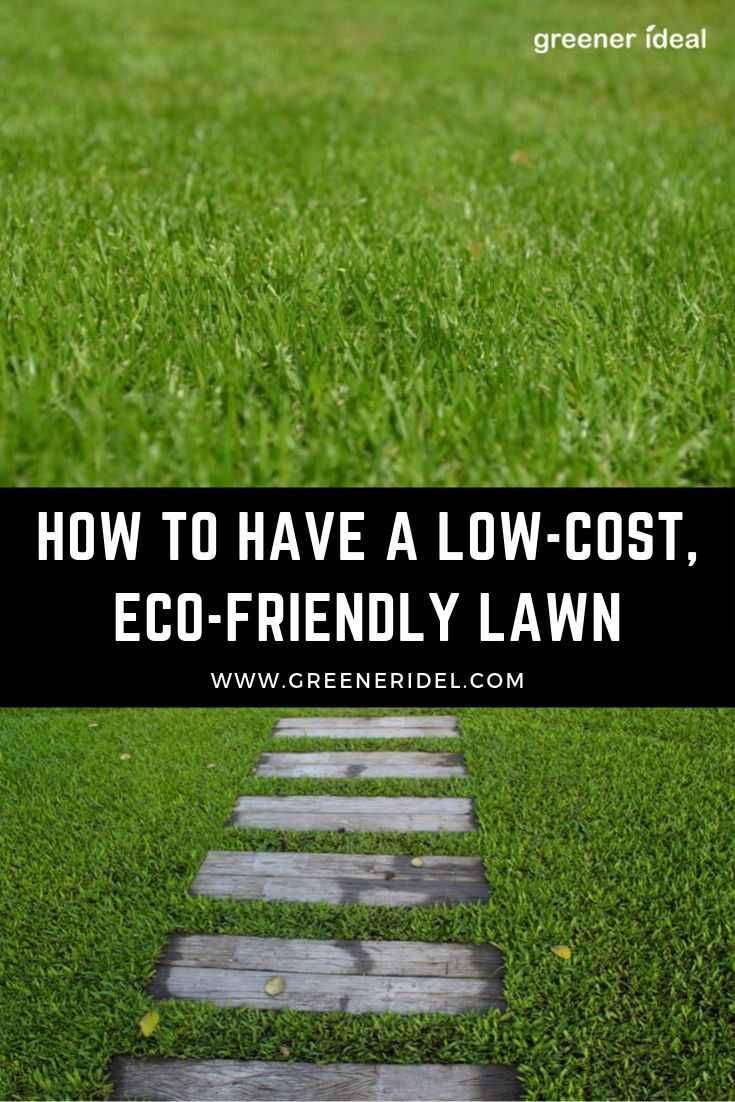 How To Have A Low Cost Eco Friendly Lawn Lawn Eco Friendly Green Lawn