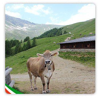 Benvenuti nel portale istituzionale dell'agriturismo Italiano | Agriturismo Italia - Territori e paesaggi