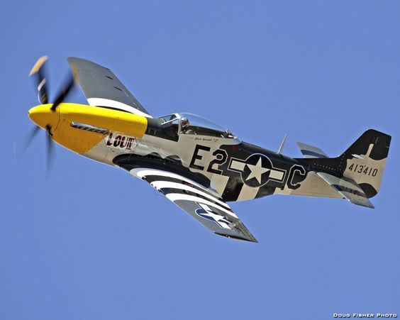 523 best P-51 Mustang images on Pinterest Mustang, Mustangs and - p&l template