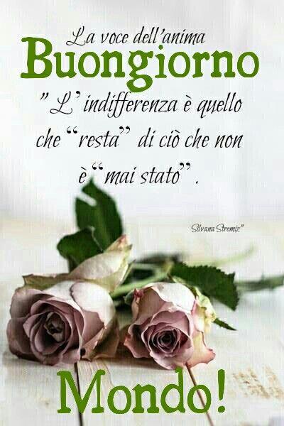 1000 images about buongiorno con i fiori on pinterest for Immagini con frasi di buongiorno