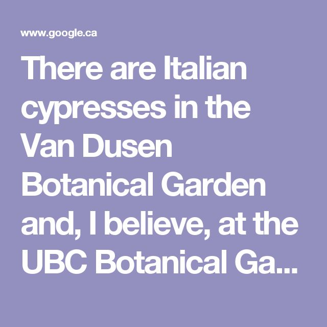 """There are Italian cypresses in the Van Dusen Botanical Garden and, I believe, at the UBC Botanical Garden. It is supposed to be hardy to Zone 7. However, see this recent answer from the Times Colonist speaking about Victoria (which is warmer and dryer than the Lower Mainland):  Helen Chestnut, Victoria Times Colonist, July 29, 2008 """"A. Growing Italian cypress (Cupressus sempervirens), a much-loved feature of Mediterranean landscapes, has been considered somewhat iffy in our coastal clima..."""