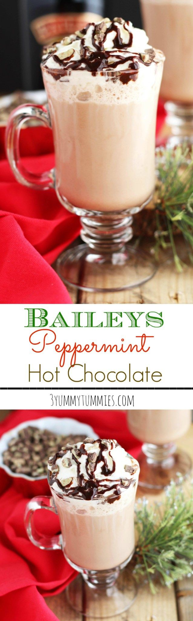 Baileys Peppermint Hot Chocolate   3 Yummy Tummies