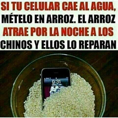 #wattpad #de-todo Momos shidoris(?