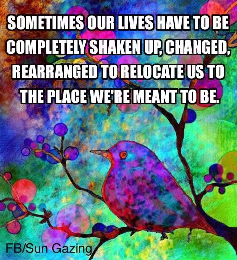 Meant to be... fb/sungazing