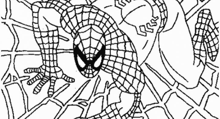 Spiderman Coloring Pages Free to  Really encourage  in coloring page