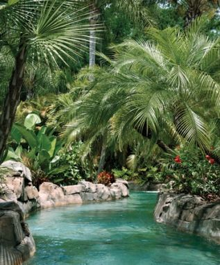 tropical landscape along a lazy swimming pool