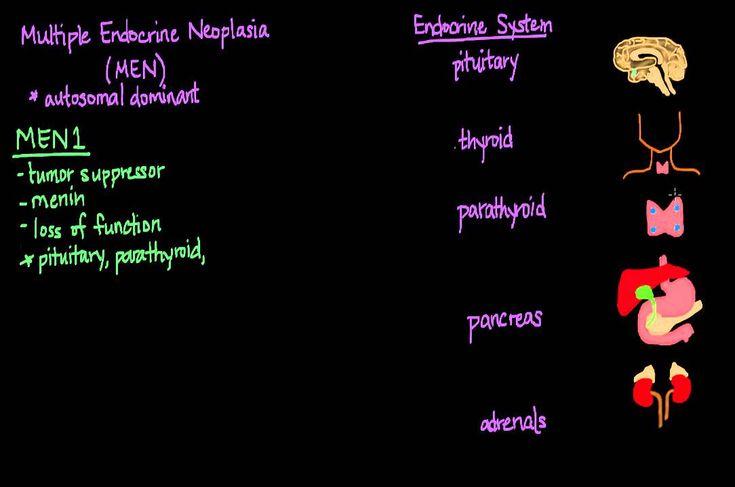 Multiple Endocrine Neoplasia (MEN)