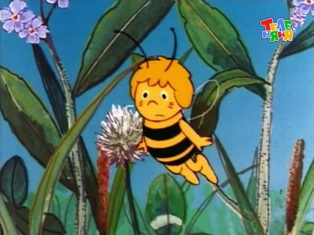 Maya the Bee!!! From Nick Jr! Nobody ever knows what I'm talking about, but I Loved this show!!