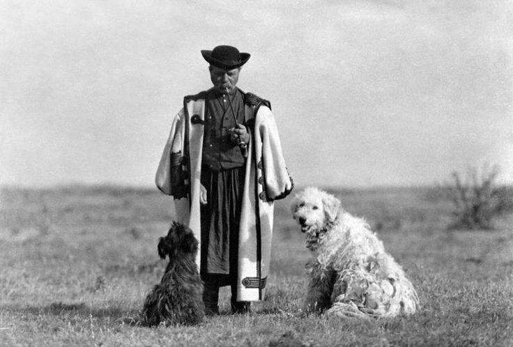 Magyar pásztor cifraszűrben puli kutyáival - Hungary