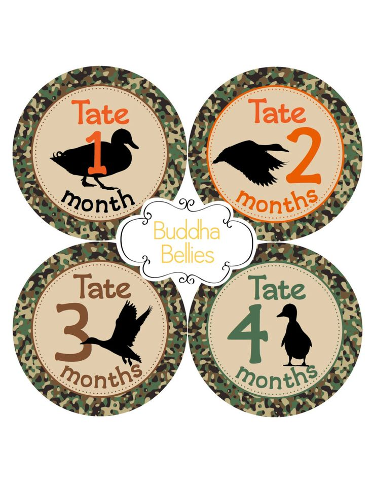 Duck Hunting Baby Month Stickers - Mallard Duck Hunter - Hunting Nursery - Hunter Baby Shower Gift - Monthly Baby Stickers - Hunting Buddy by BuddhaBellies on Etsy https://www.etsy.com/listing/475901419/duck-hunting-baby-month-stickers-mallard