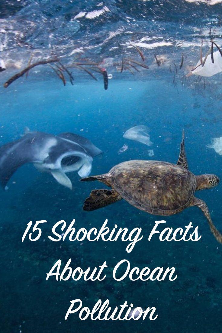 Best 25 Ocean Pollution Ideas On Pinterest Garbage