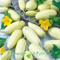 100 americano blanco milagro Pibozhiduo fría pepino semillas de pepino variedades jardín de DIY vegetal, envío gratis