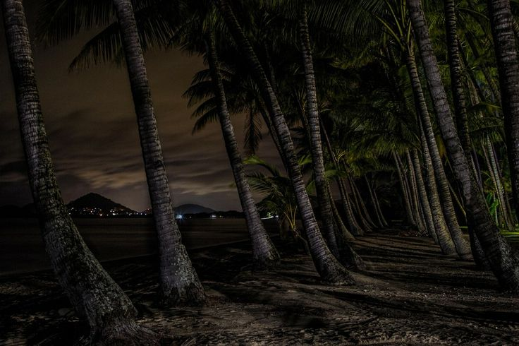 Palm Cove at Night by Hans Schmidt on 500px