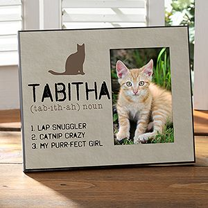 I need one for each of my cats....and Fat Boy!!!!(Definition of My Cat Personalized Photo Frame)