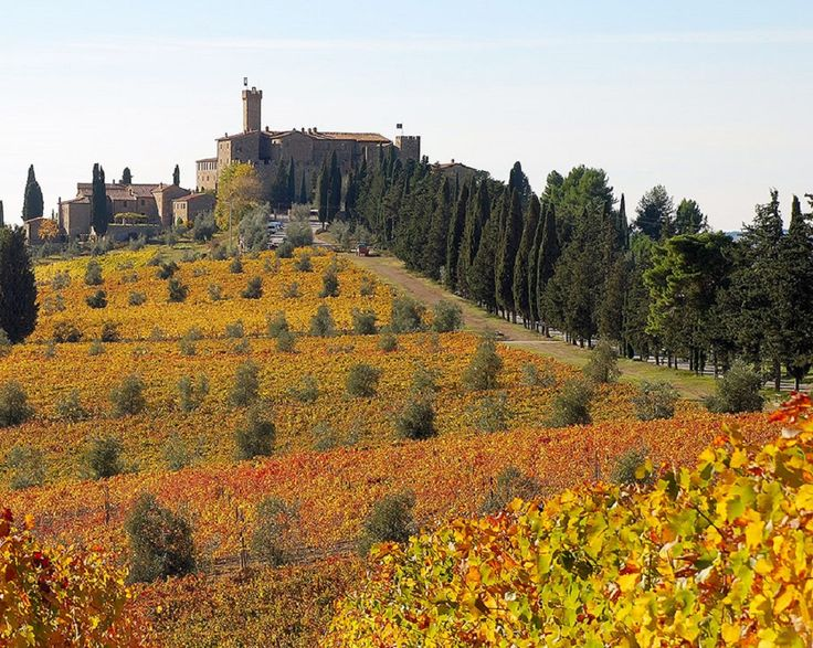 4 Magical Vineyard Villas To Escape To In Tuscany PG 2