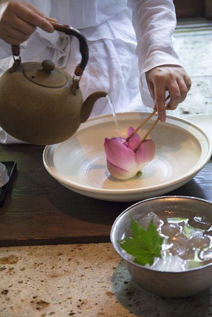 Lotus flower tea, Yocca.  LES  FLEURS  DE  THE  J ADORE  ,,,RARE  ET  CHER  MAIS  DE  VRAI  THE,,,,,**+