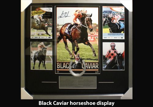 Black Caviar horseshoe display