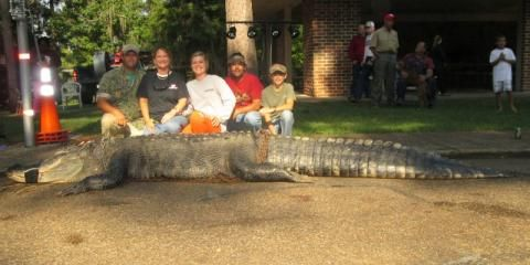 Alligator Hunting Season in Alabama | Outdoor Alabama