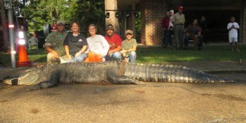 Alligator Hunting Season in Alabama | Outdoor Alabama