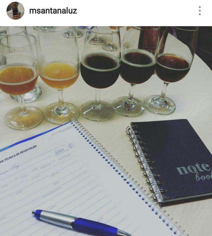 aula de sommelier de cerveja análise sensorial