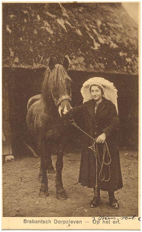 Het leiden van het paard uit de stal door de boerin in klederdracht 1900-1920 #NoordBrabant