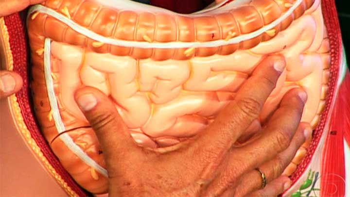 Anuncios El colon es un órgano de vital importancia para el ser humano. Este mide alrededor de 1.5 metros y es la penúltima parte del tuvo digestivo. Su función principal es la de absorber agua, nutrientes y minerales de los alimentos. Otra de sus funciones de las que no nos queda la menor duda, es …